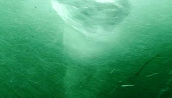 1.水中から見る渦潮(画像)
