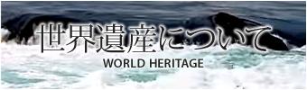 世界遺産について